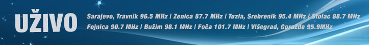 Radio BIR online