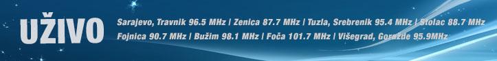 Radio BIR online